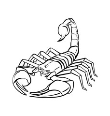Scorpion Warrior vector illustration