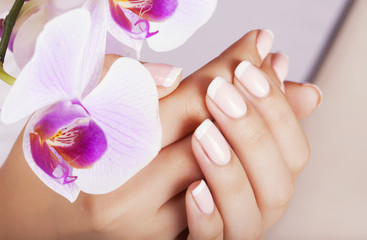 Wall Mural - Beautiful woman's nails with french manicure.