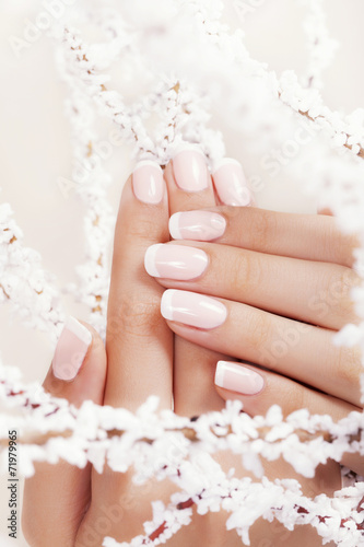 Fototapete Beautiful woman's nails with french manicure.