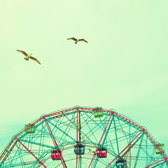 Seagull flying over a ferris wheel