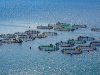 Fish farming off the coast of Greece