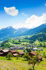 Wall Mural - Traditional countryside near Alps in summer