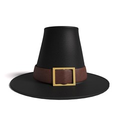 3d illustration of a pilgrim hat