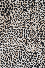 texture of close up fabric striped leopard