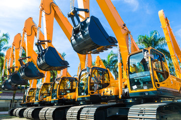 Wall Murals Palm tree Shovel excavator on Asian rental company site