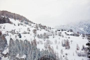 알프스산맥