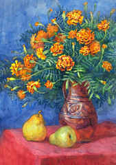 Watercolor still life. Marigolds magnificent bouquet with ripe p