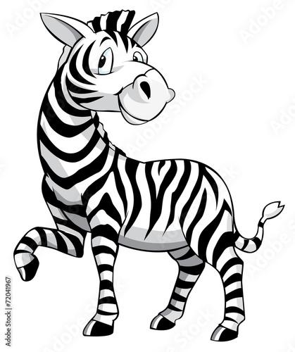 Zebra Cartoon Stock Images RoyaltyFree Images amp Vectors