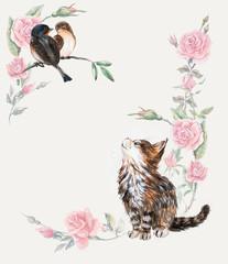 Kitten hunts on a birds. Pink roses frame.