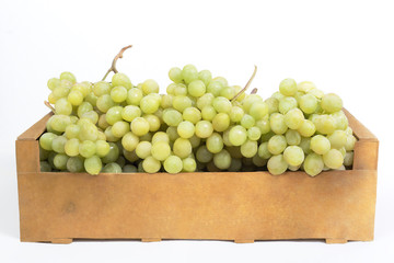 Fresh white grapes in a wooden box on a white background