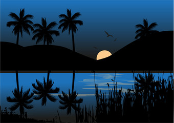 Night at lake background