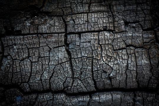 Closeup of burn log