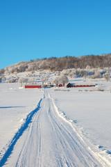 Winter dirt road