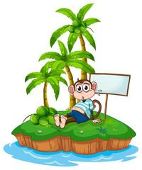 Monkey and island