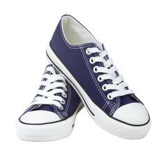 Pair of blue sneakers