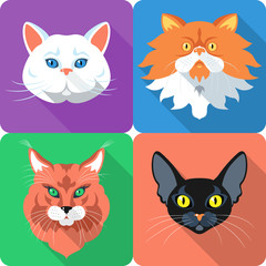 Set Cat icon flat design