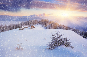 Wall Mural - Christmas landscape