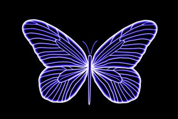 Florescent Colorfu Bluel Butterfly
