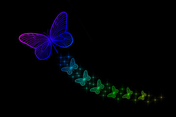 Florescent Colorful Butterflies