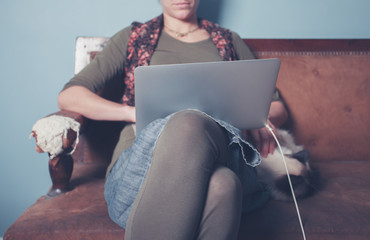 Woman working on laptop with cat