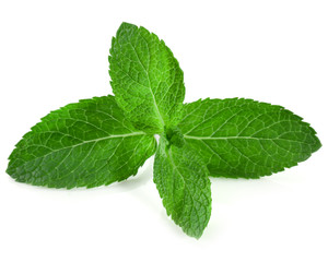 Fresh raw mint