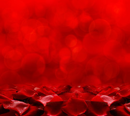 Red rose petals background.