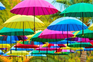 beautiful multi-colored umbrellas on a sunny day