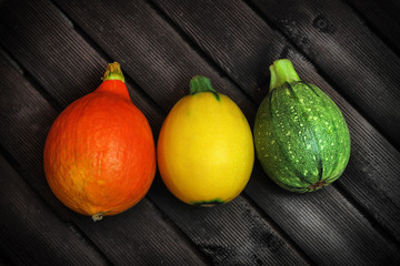 Three, colorful, autumn pumpkins on a dark background