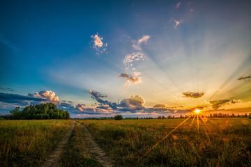 Дорога в поле на фоне заката