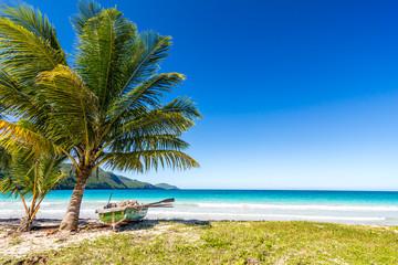 Boat, palm tree beautiful tropical beach Playa Rincon