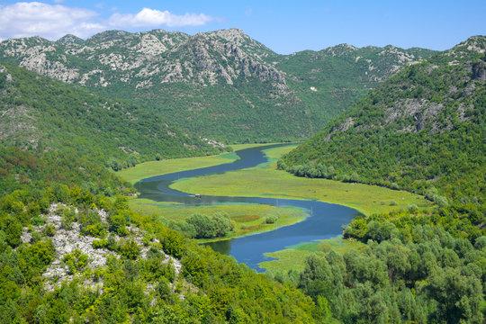 Crnojevica River In Skadar Lake National Park, Montenegro