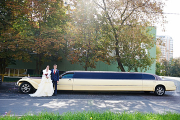 Happy groom and bride about long retro limousine