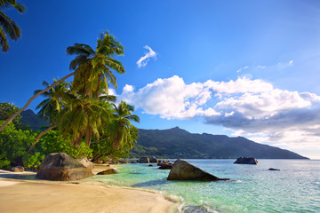 Wall Mural - Tropical beach with palms and rocks in Mahe Island, Seychelles