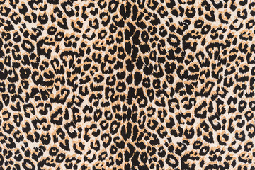 Acrylic Prints Leopard texture of leopard fabric striped