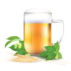 Glass of beer, hops and barley - isolated on white background