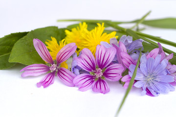 Small bunch of bright flowers.