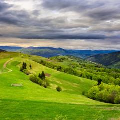 fence on hillside meadow