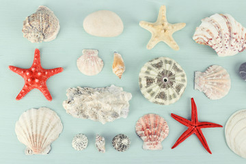 Sea souvenirs on light blue background