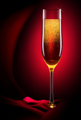 luxury glass of champagne