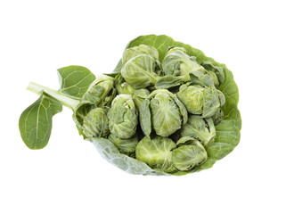 brussels sprouts compromised on grepen
