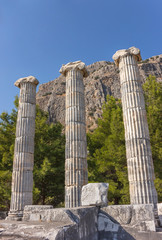 temple and sanctuary of Athena