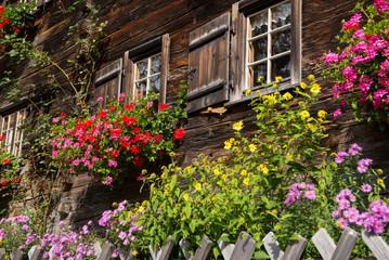 Garten mit blühenden Blumen vor Haus aus Holz