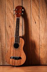 ukulele guitar with wooden wall background