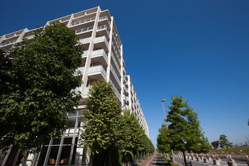 新興住宅地の大型マンション