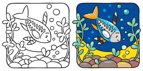 X-ray fish coloring book
