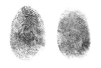 fingerprint or thumbprint set isolated Wall mural