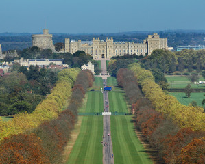 Wall Mural - The Long Walk and Windsor Castle
