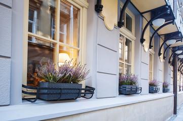 flowers on the windows street