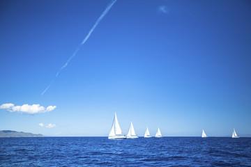 Sailboats participate in sailing regatta. Yachting.