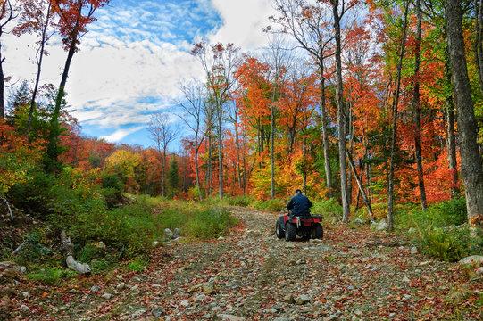 senior man riding an ATV quad by an colourful autumnal day